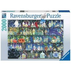 Puzzle 2000 pièces :...