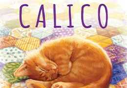 Calico - Avis